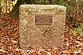 Sanzen-Baker oak, Beechenhurst, Forest of Dean - geograph.org.uk - 1053571.jpg