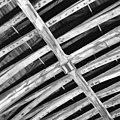Schildering gewelfribben - Alkmaar - 20005744 - RCE.jpg
