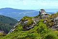 Scotland Highlands (18608922414).jpg