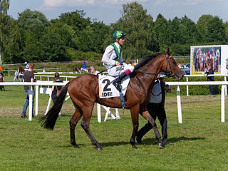 Sea The Moon German-bred Thoroughbred racehorse