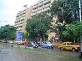 Sector-V Saltlake - Kolkata 2007-08-13 08503.JPG
