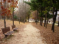 Seoulforest path01.jpg