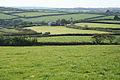 Shebbear, towards Little Ladford - geograph.org.uk - 590913.jpg