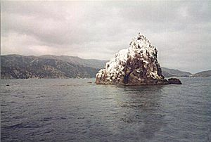 Diosa del Mar - Ship Rock is located 3 miles east of the Isthmus on Catalina Island, California.