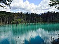 Shirogane Blue Pond 2015-09-15.jpg