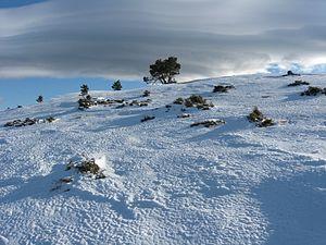 Sierra de Urbión nevada.JPG