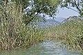 Skadar Lake, Montenegro 33.jpg