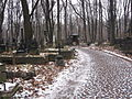 Smolensk Lutheran cemetery 2.JPG