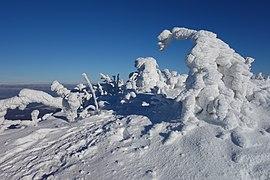 Sninský kameň (v zime) 061.jpg