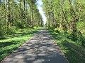 Snohomish Centennial Trail (9567062572).jpg