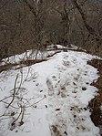 Snow patch in Kanagawa prefecture.jpg