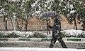 Snowy April day of Karaj - 16 April 2018 15.jpg