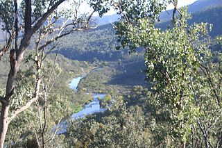 Snowy River river