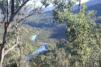 Snowy River - The Snowy River below McKillops Bridge
