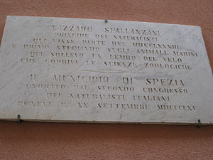 Lazzaro Spallanzani - Plaque dedicated to Spallanzani in Portovenere, Italy