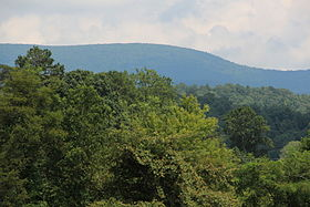 Springer Mountain viewed from the west.JPG