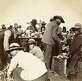 Springfontein Camp, c.1901. (22962980186).jpg