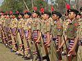 Ssg cadets.jpg