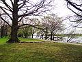 Stammheimer Schlosspark Bild 9.JPG