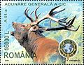 Stamps of Romania, 2004-037.jpg