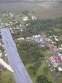 Starr-050405-5958-Schinus terebinthifolius-habit-Makawao-Maui (24373725509).jpg