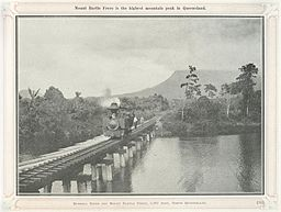 Mount Bartle Frere 1924