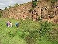 Steinbruch mit Stromatolithen - geo.hlipp.de - 13756.jpg