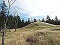 Stenbjerghuse 2012-09-05 12-29-35.jpg