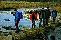 Stepping Stones, River Skirfare - geograph.org.uk - 90931.jpg