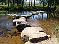 Stepping stones across West Dart - geograph.org.uk - 183648.jpg