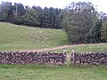 Stile, Alton Common - geograph.org.uk - 230711.jpg