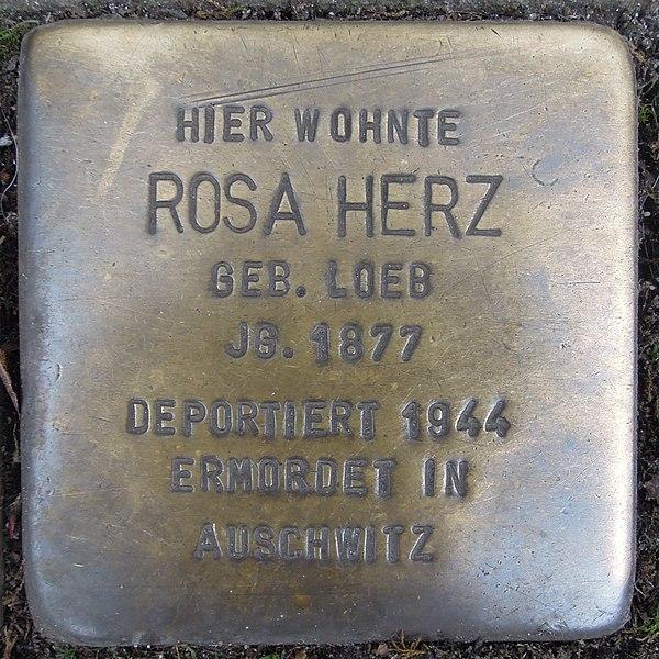 File:Stolperstein Düren Weierstraße 9 Rosa Herz.JPG