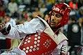 Taekwondo tournament.jpg