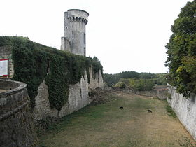 Image illustrative de l'article Château de Taillebourg