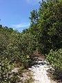 Tangkiling Nature 04.jpg