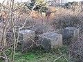 Tank traps, Longniddry - geograph.org.uk - 332306.jpg