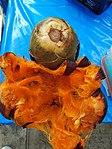 Tarn Palm Fruit of Thailand.JPG
