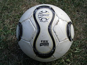 standart futbol topu