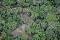 Terra Indígena Pirititi, Roraima (41558032895).jpg
