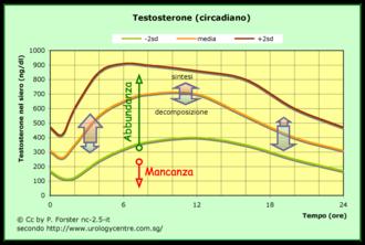 ciclo testosterona e stanozolol