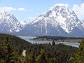 Teton range greenery and sky.JPG