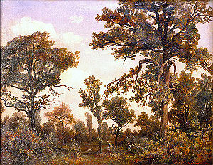 The Large Oak Tree, Forest of Fontainebleau