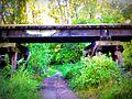 The Dan Patch Line Bridge - Bloomington, MN - panoramio (17).jpg