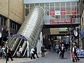 The Escalator - geograph.org.uk - 404900.jpg