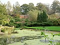 The Japanese Garden through the round window - geograph.org.uk - 272751.jpg