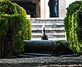 The Little Fountain (47282126701).jpg