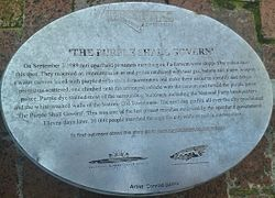 The purple shall govern   plaque