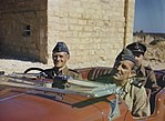 The Royal Air Force in Malta, June 1943 TR1062.jpg