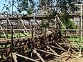 The Wildcat roller coaster 3, Hersheypark, 2013-08-10.jpg