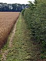 The Wolds ' Way - geograph.org.uk - 931073.jpg